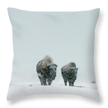 Throw Pillow featuring the photograph Winter's Burden II by Sandra Bronstein