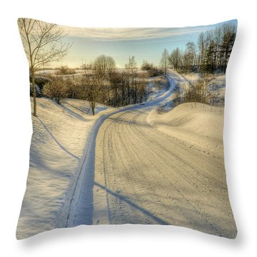 Wintry Road Throw Pillow