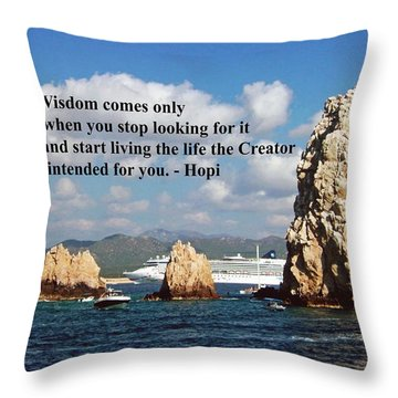 Wisdom Throw Pillow by Gary Wonning
