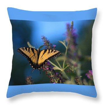 Throw Pillow featuring the photograph Summer Flight by Geri Glavis