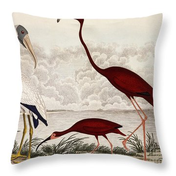 Wood Ibis, Scarlet Flamingo, White Ibis Throw Pillow