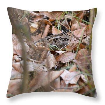 Timberdoodle 2 Throw Pillow