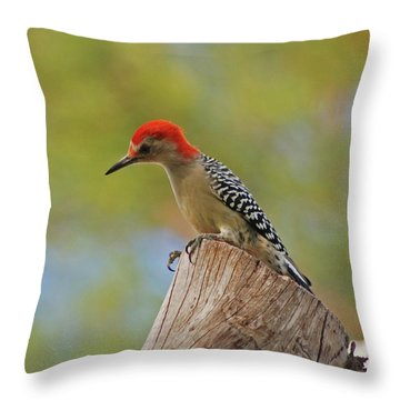 Throw Pillow featuring the digital art 1- Woodpecker by Joseph Keane