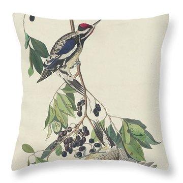 Yellow-bellied Woodpecker Throw Pillow by John James Audubon