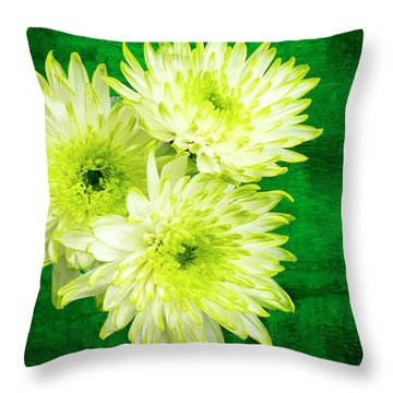 Yellow Chrysanthemums On A Green Background. Throw Pillow by Paul Cullen