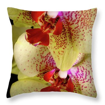 Throw Pillow featuring the photograph Yellow Orchid by Dariusz Gudowicz