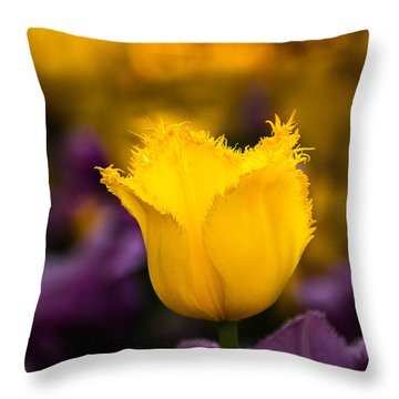 Throw Pillow featuring the photograph Yellow Tulip by Jay Stockhaus