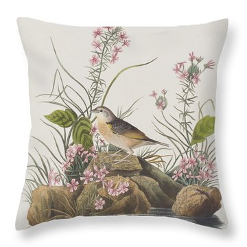 Yellow-winged Sparrow Throw Pillow