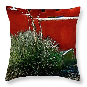 Yucca And Adobe Throw Pillow
