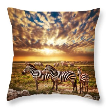 Zebras Herd On African Savanna At Sunset. Throw Pillow