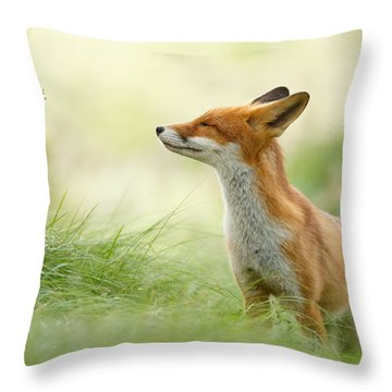 Zen Fox Series - Zen Fox Throw Pillow by Roeselien Raimond