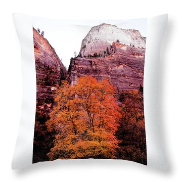 Throw Pillow featuring the photograph Zion National Park by Norman Hall