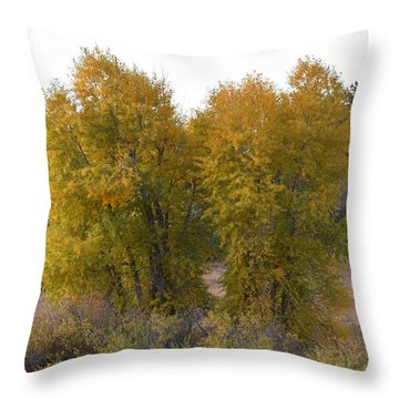 Aspen Trees In The Fall Co Throw Pillow
