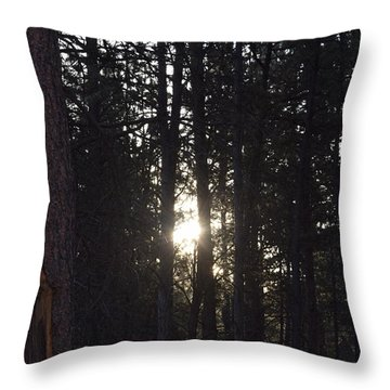 Sunrise Back Country Co Throw Pillow