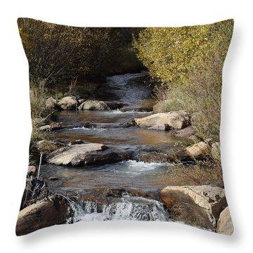 Waterfall Westcliffe Co Throw Pillow