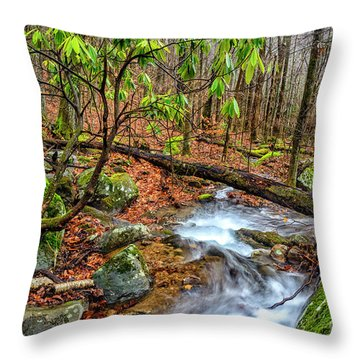 Throw Pillow featuring the photograph Little Laurel Branch by Thomas R Fletcher