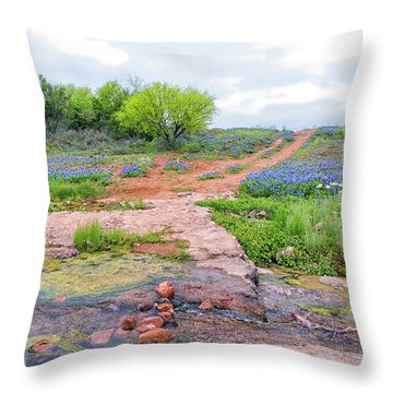 Texas Bluebonnets 9 Throw Pillow