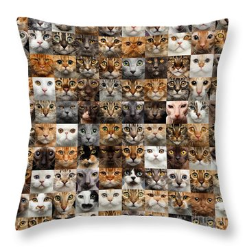 100 Cat Faces Throw Pillow