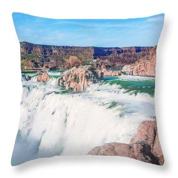10917 Shoshone Falls Throw Pillow