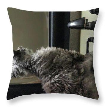 Basi Throw Pillow