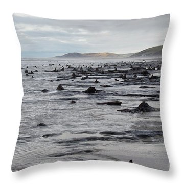 Bronze Age Sunken Forest At Borth On The West Wales Coast Uk Throw Pillow