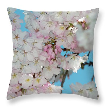 Silicon Valley Cherry Blossoms Throw Pillow