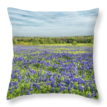 Texas Bluebonnets 11 Throw Pillow