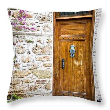 Wooden Door Throw Pillow