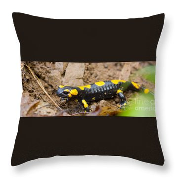 Fire Salamander Throw Pillow