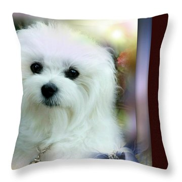 Hermes The Maltese Throw Pillow