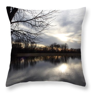 James A Reed Wildlife Area Throw Pillow by Ellen Tully