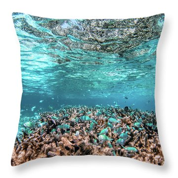 Underwater Coral Reef And Fish In Indian Ocean, Maldives. Throw Pillow