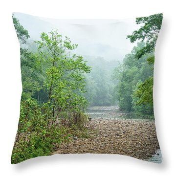 Throw Pillow featuring the photograph Williams River Summer Mist by Thomas R Fletcher