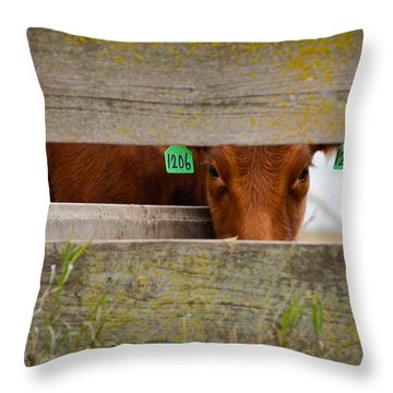 Throw Pillow featuring the photograph 1206 by Carl Young