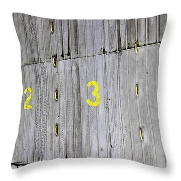 Throw Pillow featuring the photograph 1234 by Stephen Mitchell