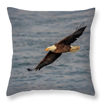 Throw Pillow featuring the photograph Bald Eagle by Peter Lakomy