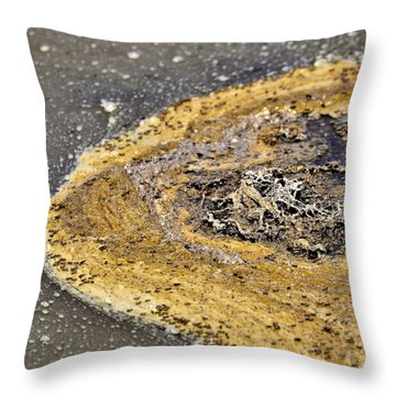 Primordial Soup Throw Pillow