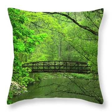 Jacobsburg State Park Pa Throw Pillow