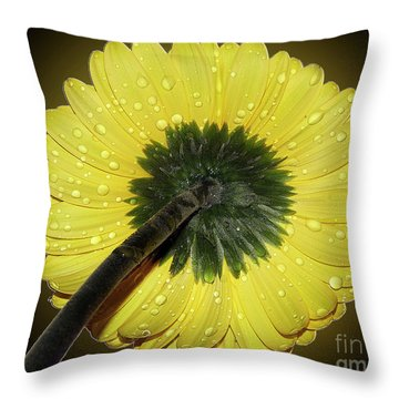 Throw Pillow featuring the photograph Yellow Gerber by Elvira Ladocki