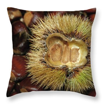 Untitled Throw Pillow by Paul Drewry
