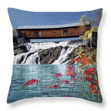 134202-a The Willard Throw Pillow