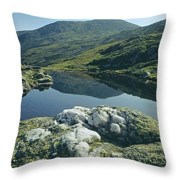 Throw Pillow featuring the photograph 135708 Lake Of The Clouds Nh by Ed Cooper Photography