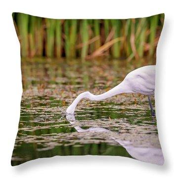 White, Great Egret Throw Pillow