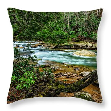 Throw Pillow featuring the photograph Back Fork Of Elk River by Thomas R Fletcher