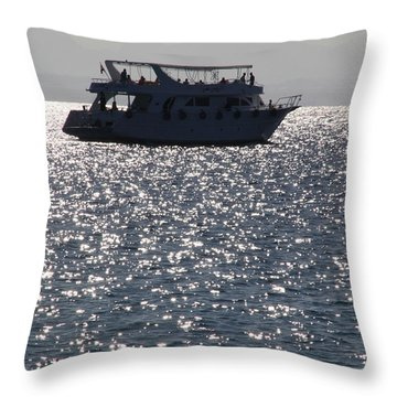 Throw Pillow featuring the photograph 15 Chillled by Jez C Self