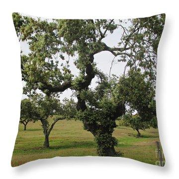 Mediterranean Oaks Throw Pillow