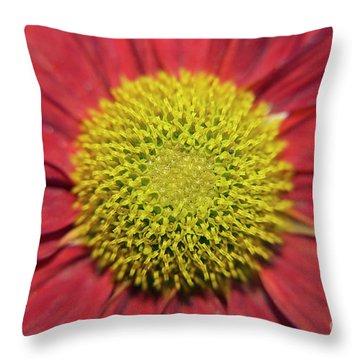 Red Flower Throw Pillow by Elvira Ladocki