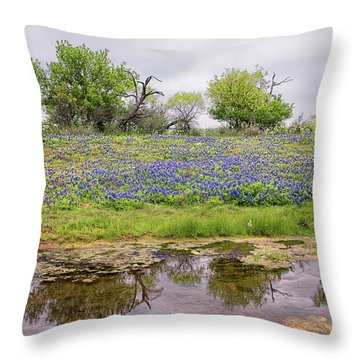 Texas Bluebonnets 7 Throw Pillow