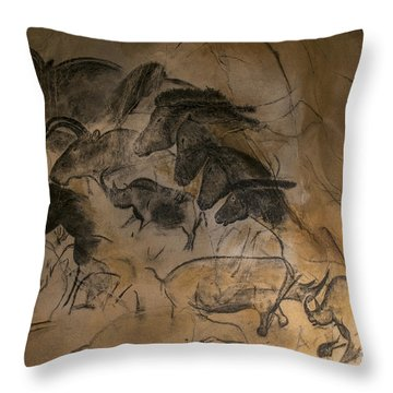 150501p084 Throw Pillow