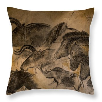 150501p085 Throw Pillow